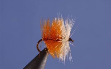Dry Fly: Coch Ordie