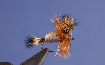 Dry Fly: Humpy Adams