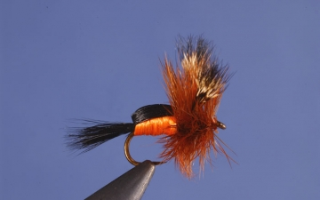 Dry Fly: Orange Humpy