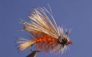 Dry Fly: Orange Seducer