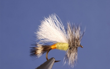Dry Fly: Yellow Trude