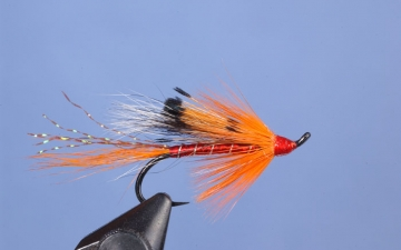 Hairwing: Ally's Shrimp