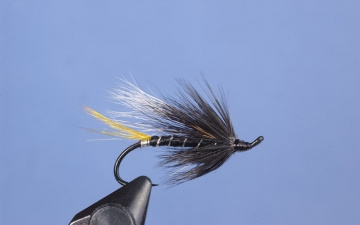 Hairwing: Black Cosselboom