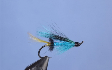 Hairwing: Laxa Blue