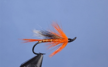 Hairwing: Orange Blossom