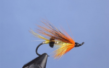 Hairwing: Orange Blossom 2