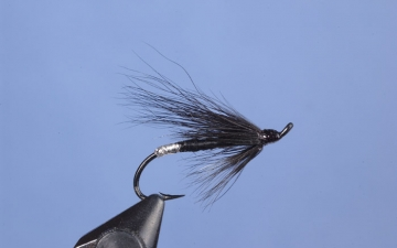 Hairwing: Silver Tip