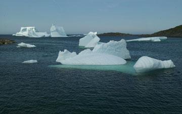Iceberg Festival